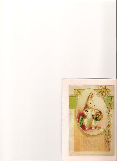 Bunny postcard 001